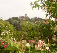 Springtime in Florence: Boboli Gardens